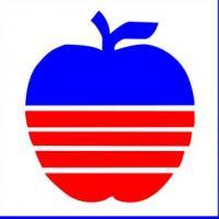 苹果仔童装加盟
