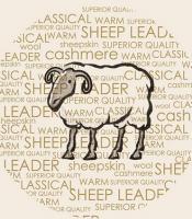羊老大男装诚邀加盟