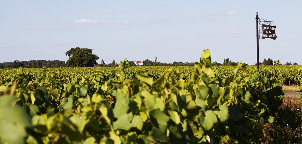 博蒂尼酒庄白葡萄酒加盟