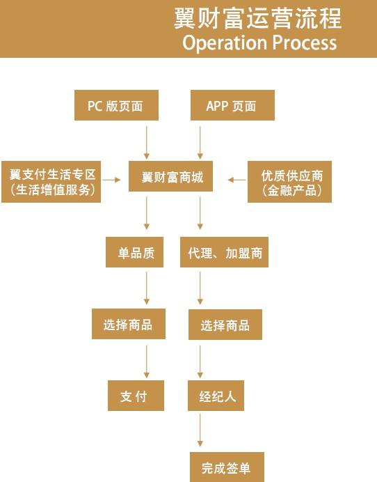 翼财富加盟流程