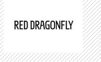 红蜻蜓箱包诚邀加盟