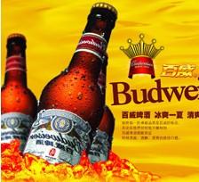 百威啤酒加盟图片