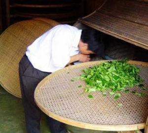 天禄茶庄加盟图片