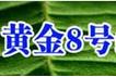 黄金8号诚邀加盟