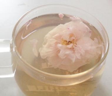 平陰玫瑰茶
