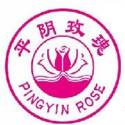 平阴玫瑰花茶加盟