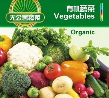 礼品蔬菜诚邀加盟