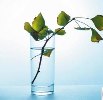 巴玛碱性水加盟图片