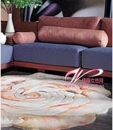 华源地毯加盟图片