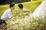上海皇室婚纱摄影加盟图片