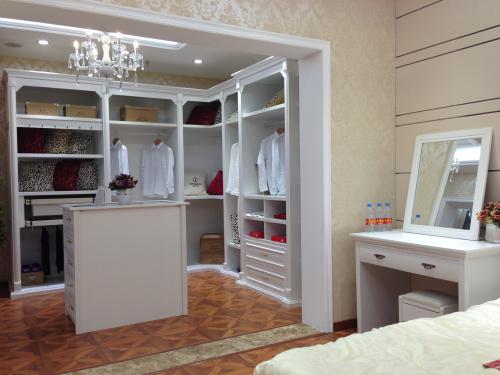 客厅的衣柜样式