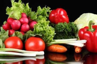 反季节蔬菜种植技术指导 创业者须知_就要加盟