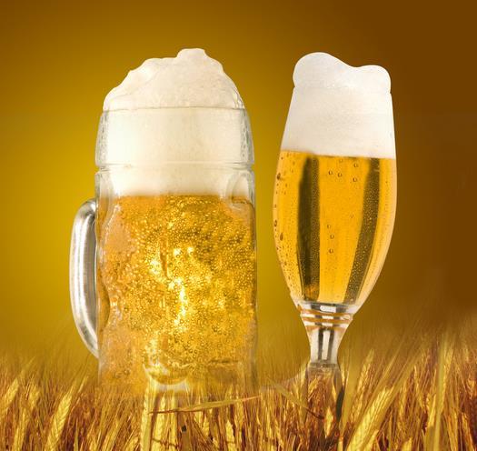 天湖啤酒加盟图片