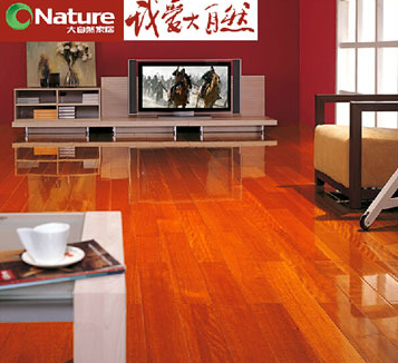 大自然木地板加盟图片