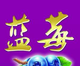 蓝莓饮料加盟