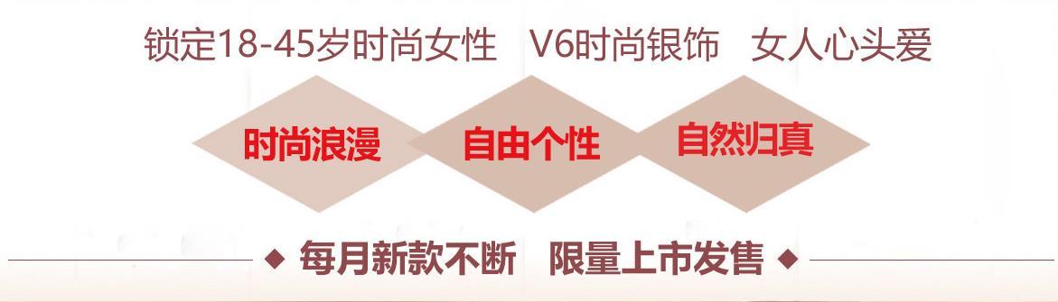 V6銀飾加盟