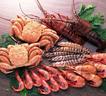 安进食品加盟图片