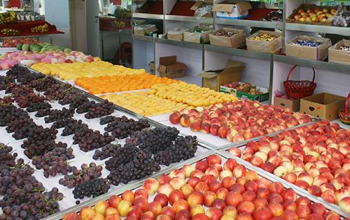 阳光水果超市加盟电话