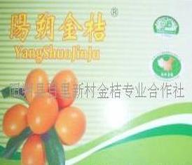 百里新村果业加盟