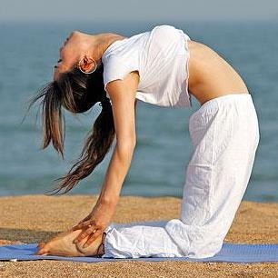 禅悦瑜伽加盟图片