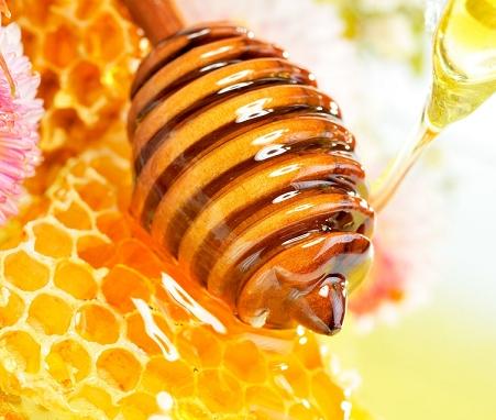 尧顺黑蜂蜂蜜