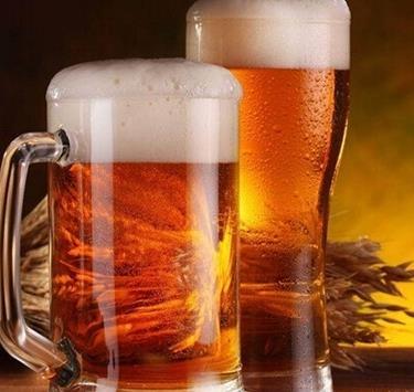 英博啤酒加盟图片