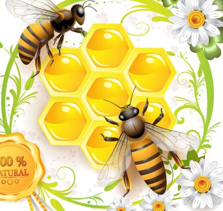 老口未蜂蜜食品加盟图片