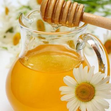 琼思美黑蜂蜂蜜加盟图片