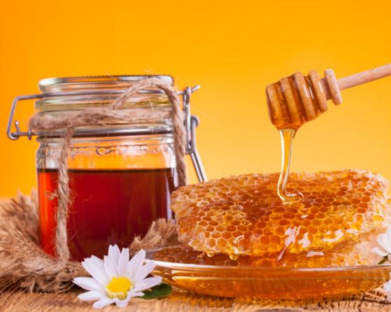 蜂力奇蜂蜜加盟图片