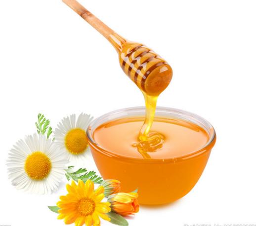 金树蜂蜜加盟图片