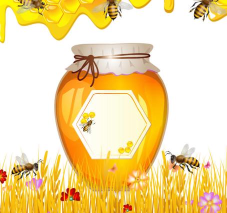 金蜜香蜂蜜加盟图片