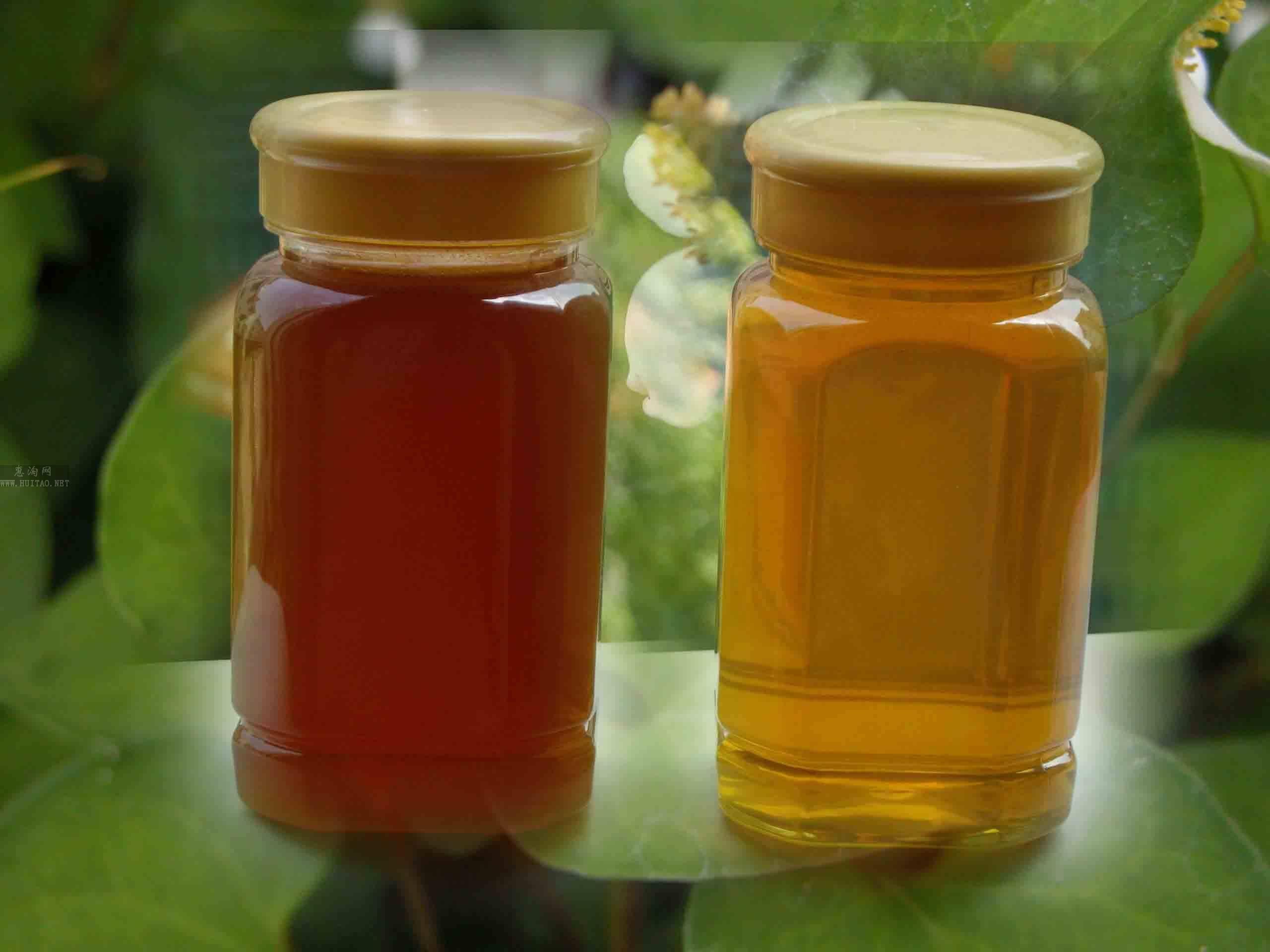 蒙山蜂蜜加盟图片