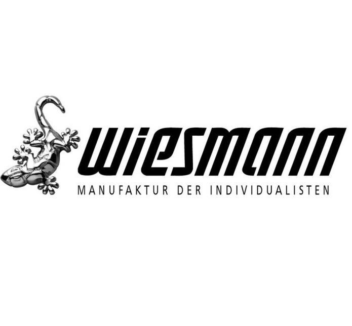 威兹曼4s店