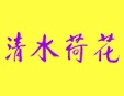 清shui荷花