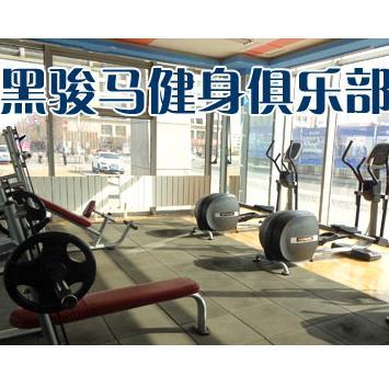 黑骏马健身俱乐部加盟图片