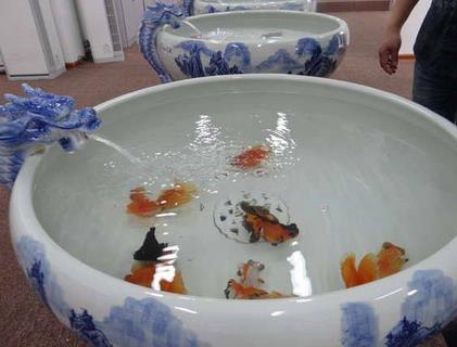 水绘典藏鱼缸