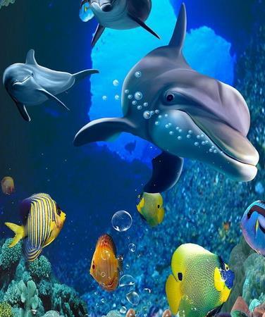 东海龙宫水族馆加盟