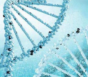 云康基因检测加盟