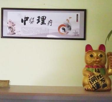 中医理疗养生馆加盟