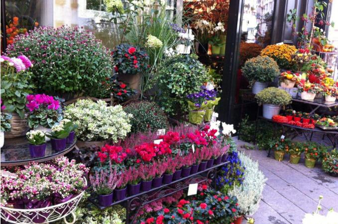 自己开店做什么赚钱NO.1、花店 如今,生活条件好了,人们手中的资金也宽裕了,很多人都在城市买起了房。有了房子之后,人们势必会想到要装饰它,让其变得更温馨、浪漫。漂亮、优雅、艳丽的鲜花自然会成为不少人的装饰首选。所以,开花店,投资者是可以赚到钱的。 不过,在开花店之前,投资者需要先对周边的居民的喜好、收入、消费能力等信息进行了解。