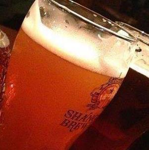 自酿啤酒加盟