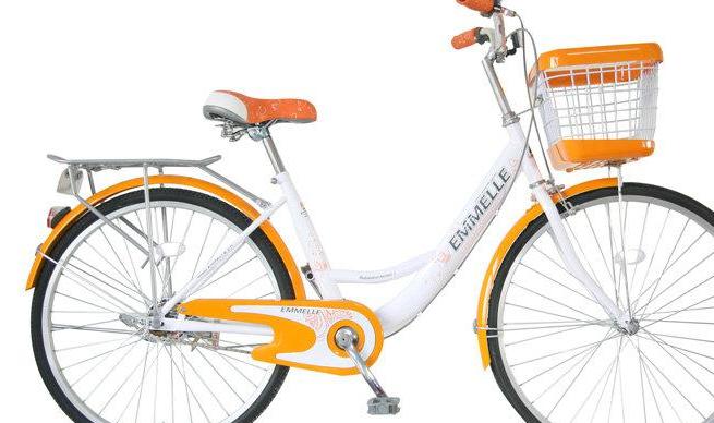 阿米尼自行车加盟