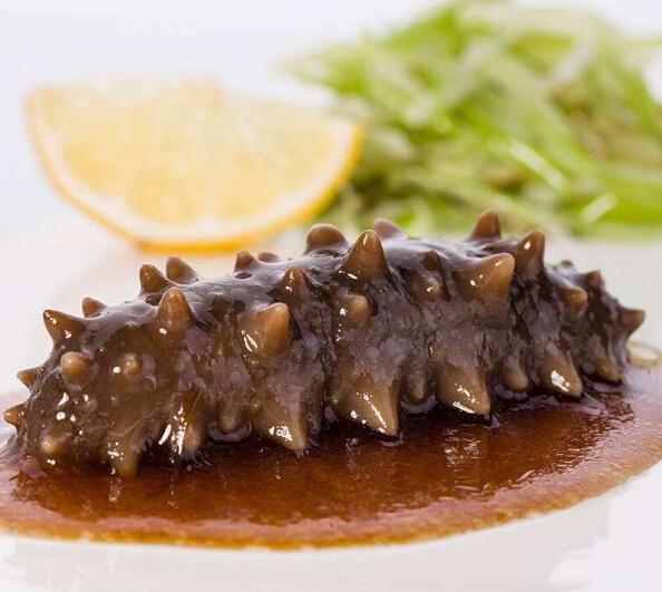 獐子島海參