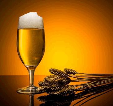 土豪金啤酒加盟图片