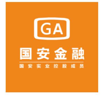 国安融资租赁(深圳)有限公司
