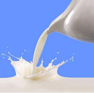 四季鲜奶吧