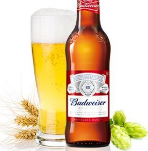 小支啤酒加盟图片