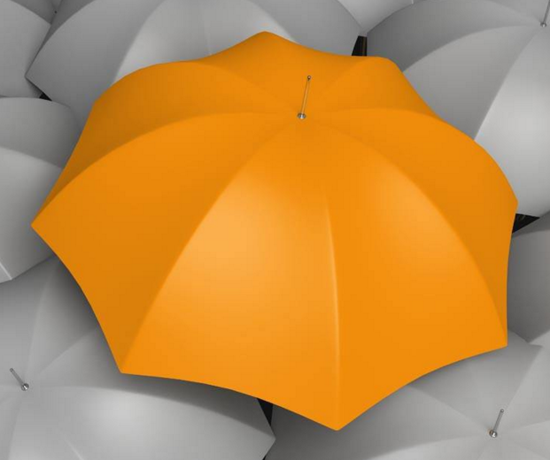 有把伞加盟图片