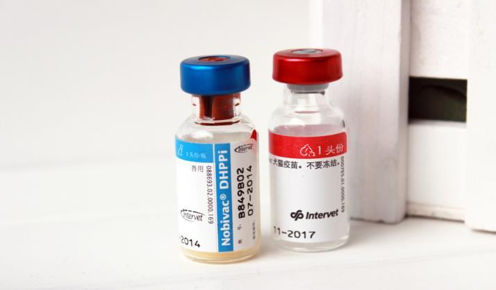 四联疫苗加盟