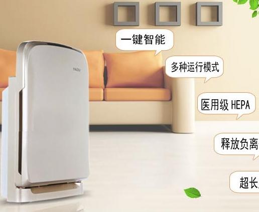 小熊空气净化器加盟图片